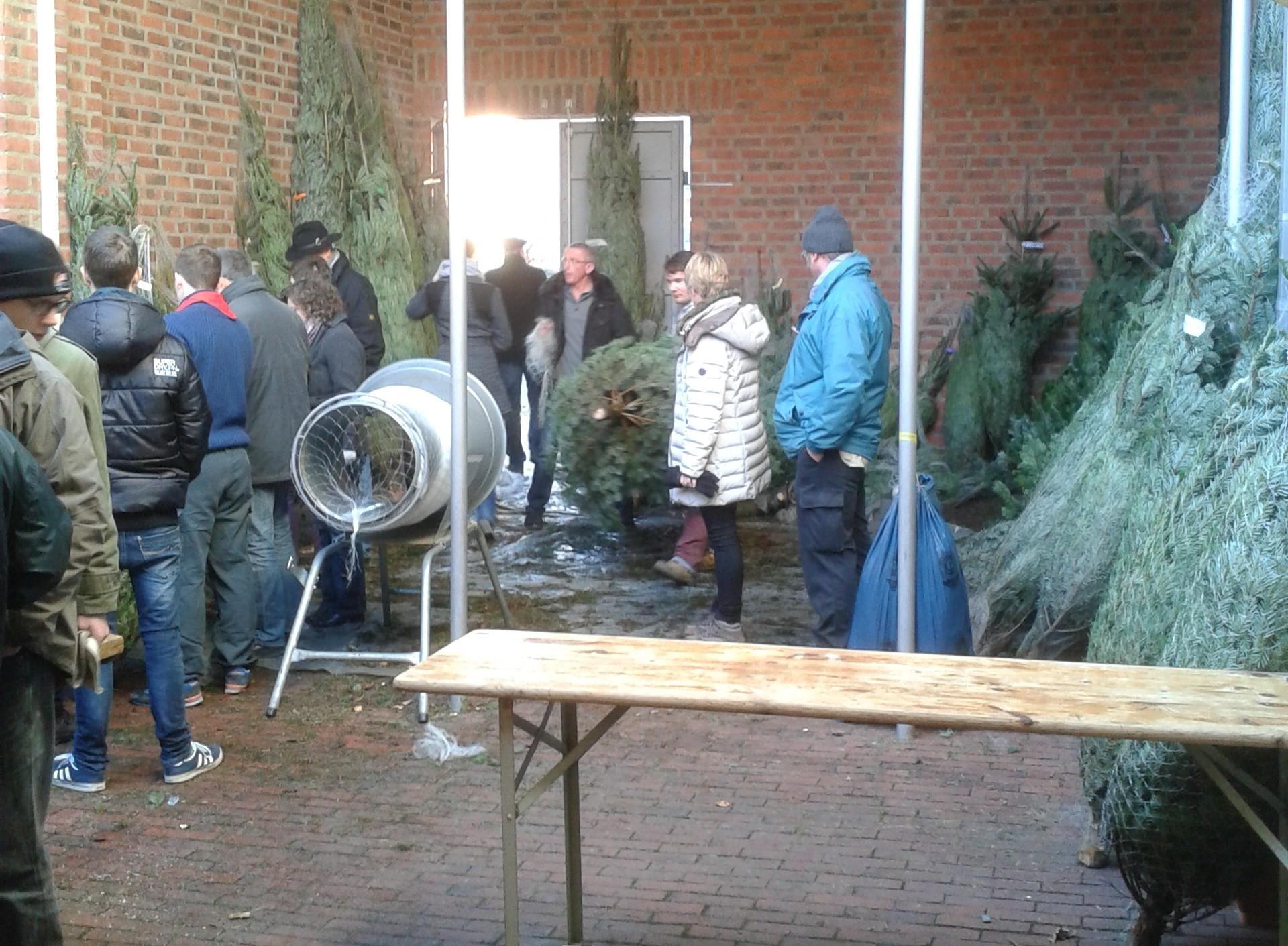 Weihnachtsbaumverkauf in Blumenberg